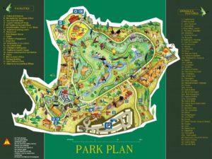 Зоопарк и парк птиц